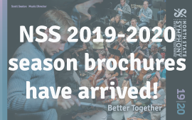 NSS 2019-2020 Brochures are here!